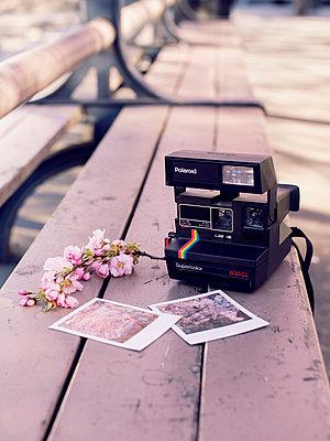 Polaroid - p1507m2037864 by Emma Grann