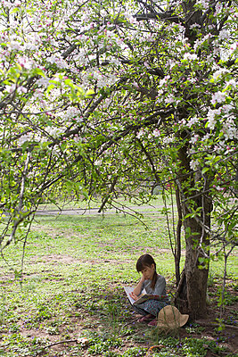 Girl Sitting and Reading by Apple Tree - p463m2045059 by Yo Oura