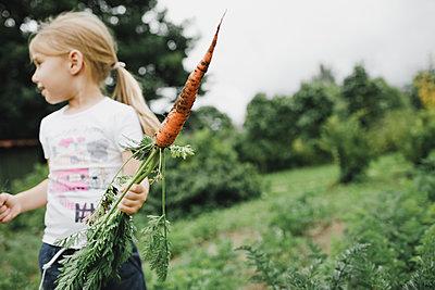 Little girl holding carrot in garden - p300m2132118 by Katharina Mikhrin
