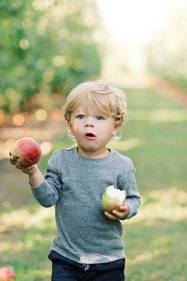 Little boy holding an apple. - p1166m2151894 by Cavan Images