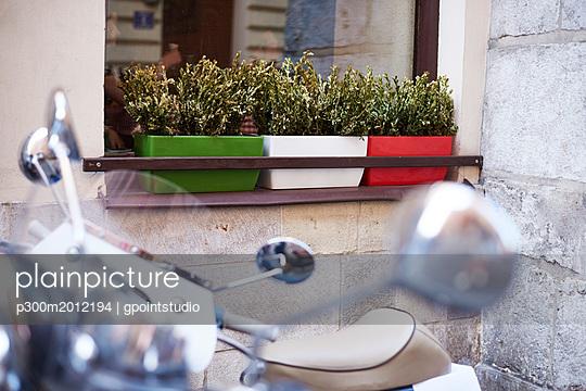 Three flower box on window sill of a house - p300m2012194 von gpointstudio