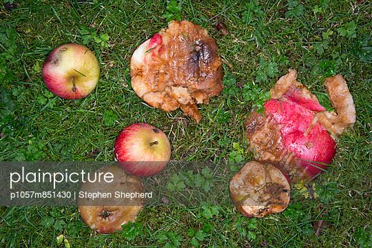 p1057m851430 von Stephen Shepherd