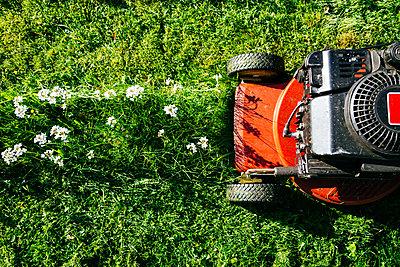 Rasenmäher - p1053m2163936 von Joern Rynio