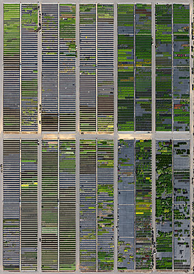Full frame shot of crop fields in landscape, Hohenheim, Stuttgart, Baden-Wuerttemberg, Germany - p301m1406261 by Stephan Zirwes
