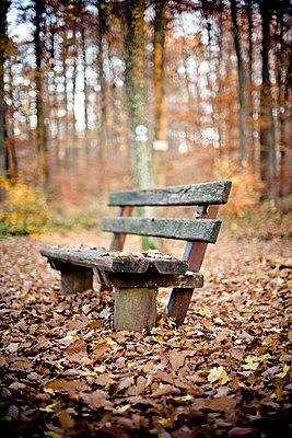 Herbst - p9460006 von Maren Becker