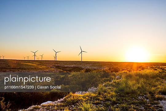plainpicture   Photo library for authentic images - plainpicture p1166m1547239 - Windmills on field against ... - plainpicture/Cavan Images/Cavan Social
