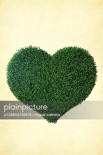 Green plastic heart - p1248m2152475 by miguel sobreira