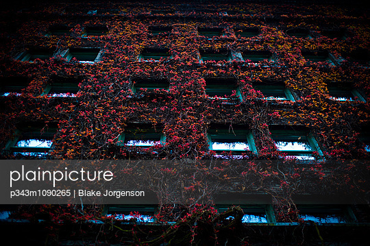 p343m1090265 von Blake Jorgenson