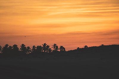 Brazil, Sunset in Taiba - p986m2227400 by Friedrich Kayser