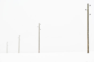 Telephone wire - p587m990121 by Spitta + Hellwig