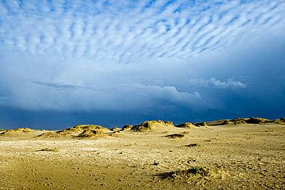 Beach in Denmark - p7540017 by Valea Diller-El Khazrajy