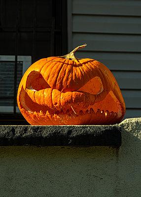 Halloween, Jack O'Lantern, holed pumpkin - p758m2222589 by L. Ajtay