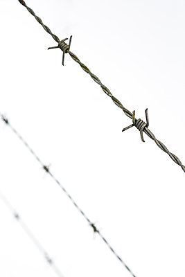 Barbed wire fence against  white snow  - p1057m1586847 by Stephen Shepherd