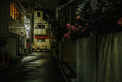 Street in Tokyo at night - p1126m1200747 by Tina Sturzenegger