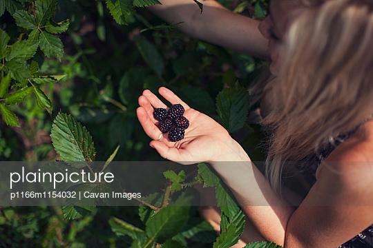 p1166m1154032 von Cavan Images