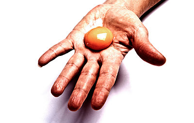 Egg yolk - p1221m1025813 by Frank Lothar Lange