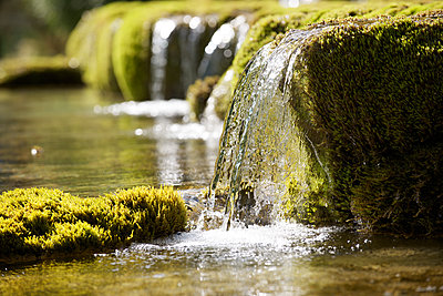 Water flowing over moss covered rocks - p624m1101459f by Odilon Dimier