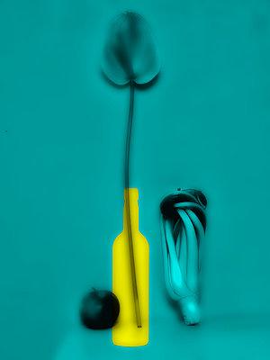 Still life  - p1413m2071116 by Pupa Neumann