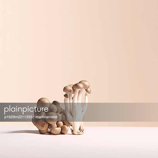 Mushrooms - p1629m2211355 by martinameier