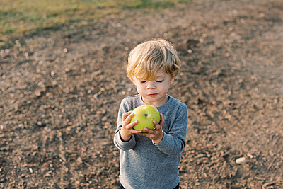 Little boy happily munching on his self picked apple. - p1166m2151891 by Cavan Images