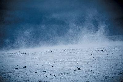 Snow storm - p1062m953967 by Viviana Falcomer