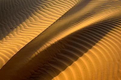 United Arab Emirates, Rub' al Khali, desert sand and ripple marks - p300m2103105 von Egmont Strigl