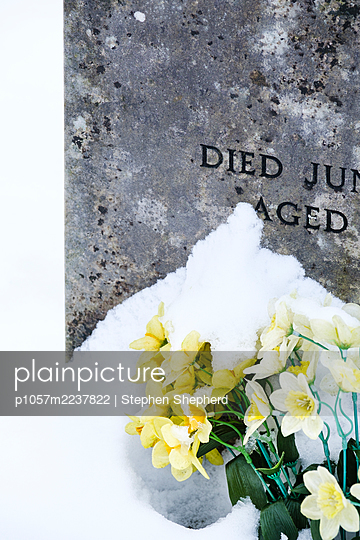 Great Britain, Snow covered plastic flowers on a grave  - p1057m2237822 by Stephen Shepherd