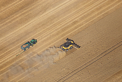 Harvest - p1016m1025684 by Jochen Knobloch