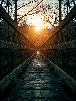 Wooden walkway at sunrise - p1280m2223571 by Dave Wall