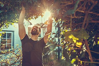 Man streckt im Sonnenlicht die Arme aus - p1491m1582669 von Jessica Prautzsch