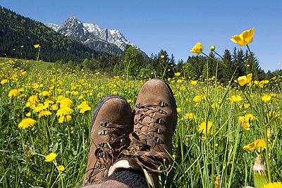 Austria, Tyrol, Kaisergebirge, Hiker relaxing on meadow - p30020509f by Gaby Wojciech