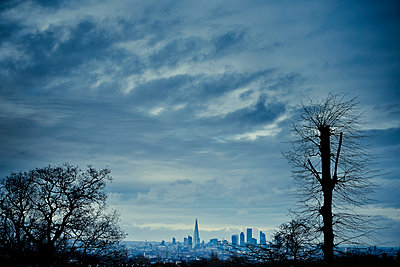 View of London skyline with silhouetted trees. - p1072m1056605 by Neville Mountford-Hoare