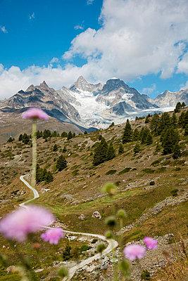 Zermatt - p880m822357 by Claudia Below