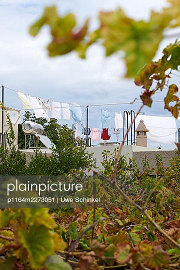 Washing on the line, everyday life, Kos, Greece - p1164m2273051 by Uwe Schinkel