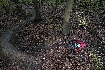 Germany, Lower Saxony, Deister, Bike Freeride in forest - p300m930053f by Martin Bühler