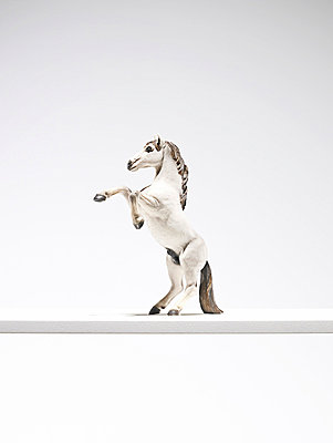 Close up of horse figurine - p42919259 by Steve Gallagher Photography