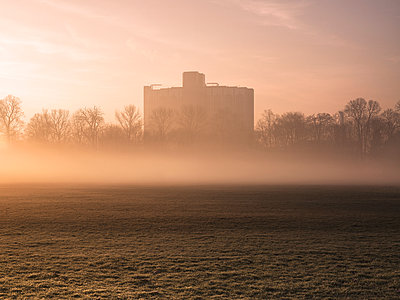 Mist hovering over park field at sunrise - p429m1418136 by David Cleveland