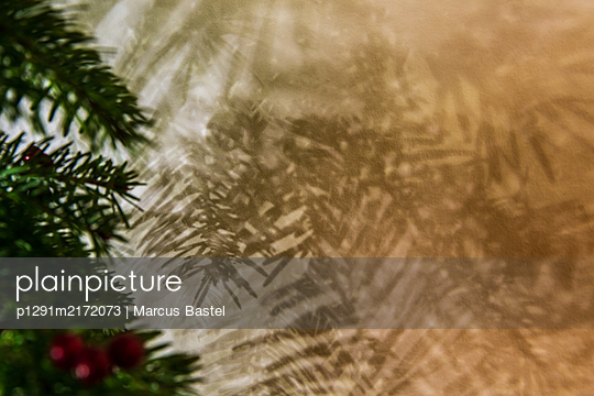 Christmas Tree - p1291m2172073 by Marcus Bastel