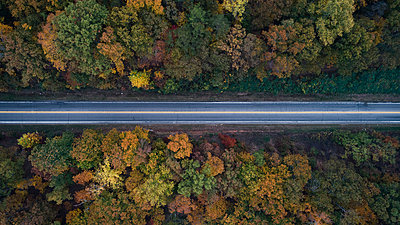 Aerial view of road amidst trees in forest during autumn - p1166m1554449 by Cavan Images