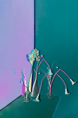 Collage, Flowers in flower vases - p1413m2278756 by Pupa Neumann