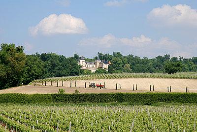Chateau - p759m1207283 von Stefan Zahm