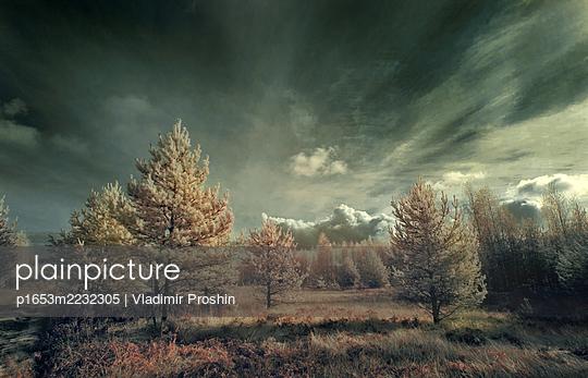 p1653m2232305 by Vladimir Proshin