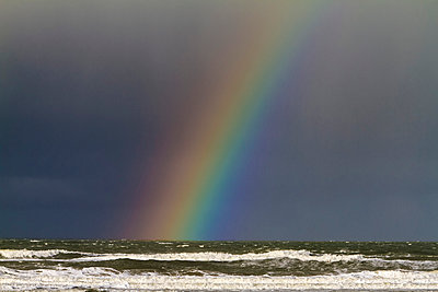 Rainbow - p417m1516214 by Pat Meise