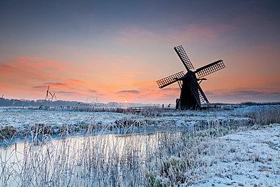 Herringfleet Mill in Winter, Suffolk, England - p651m2007024 by Tom Mackie