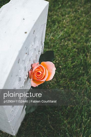 p1290m1152446 von Fabien Courtitarat