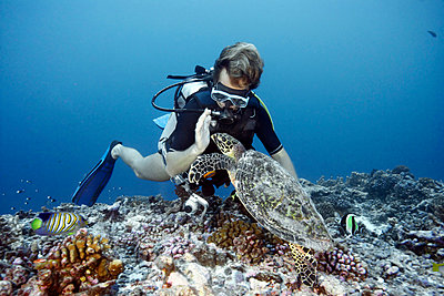 Diver swimming with hawksbill turtle - p42915588 by Zac Macaulay