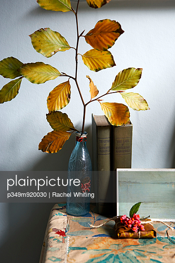 Autumn leaves in bottle on tabletop with books in Isle of Wight home;  UK - p349m920030 by Rachel Whiting