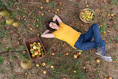 Apfelernte - p608m2057766 von Jens Nieth