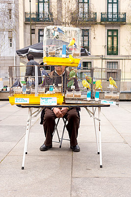 Cadged birds being sold at street market, Porto - p1201m1008154 by Paul Abbitt