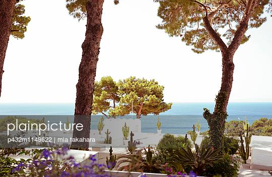 Bepflanzung auf Capri - p432m1149622 von mia takahara